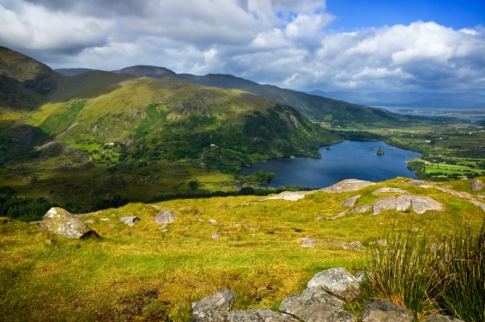 Healthcare In Ireland, Businesses In Bulgaria, And Legal Challenges For Brits Abroad