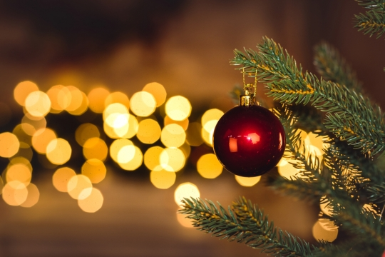 Christmas In France, Cancer Care In Portugal, And Supporting Refugees In Scotland