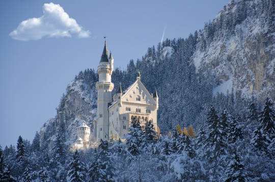Winter In Germany, Christmas Traditions Around The World, And International Schooling Options