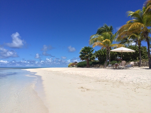 Discovering The Education System In Antigua And Barbuda