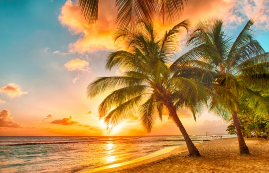 Private Schools In Barbados: An Expat Guide